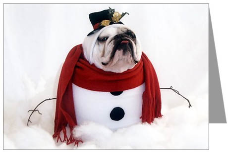 Bulldog Christmas Cards - Christmas Lights Card and Decore
